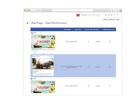 Ad Page Templates Facebook Ads Report Template Reportgarden
