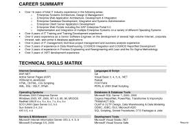 Comfortable It Resume Skills Photos Entry Level Resume Templates