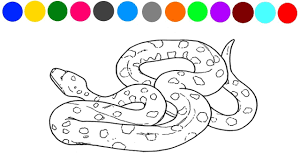 Small Picture Learn Colors and Animals Snake Coloring Page For Kids YouTube