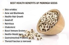 moringa seeds vipsasia