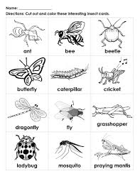 I am sure these insect coloring pages will come in handy this upcoming weekend. Bugs For Kids To Color Interesting Insects Black White Cards Student Handout Esl For Kids Insects Preschool Insects For Kids Bugs Preschool
