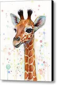 baby giraffe watercolor canvas print canvas art by olga shvartsur