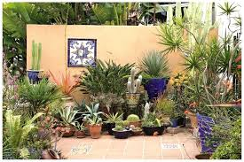 Startling Gallery Patio Plants Ideas Potted Plants Patio.jpg