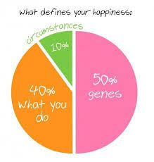 Image Result For Sonja Lyubomirsky Happiness Pie Chart