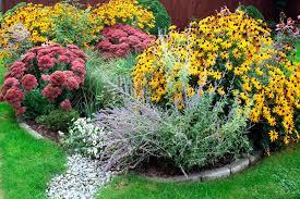 why install a rain garden