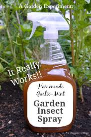How To Spray Apple Trees For Insects Naturally  Home Guides  SF GateHomemade Spray For Fruit Trees