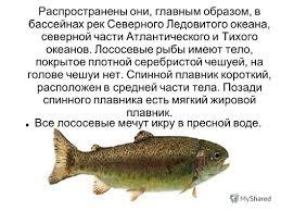 Презентация на тему Лососевые рыбы Империя Домен Эукариоты  4 Распространены
