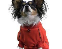Hurtta Waterproof Fleece Jacket Wet Nose Boutique