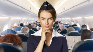 confessions of a pissed off flight attendant new york post
