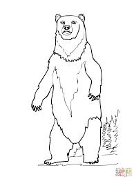 Standing Bear Cub Silhouette Vous Aimerez Peut Tre Aussi Les