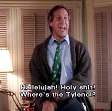Christmas Vacation Quotes Adorable National Lampoons Christmas Vacation Funny Griswold House In