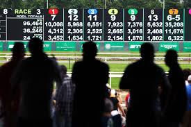 Trifecta Payout Chart How To Calculate Horse Racing Betting Odds And Payoffs