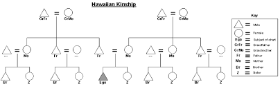 Anthropology Chart Hawaiian Kinship Chart Diagram Math Anthropology