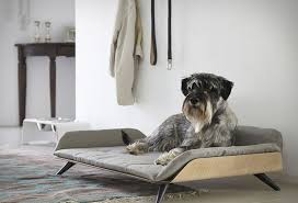 modern dog furniture. Plain Dog Designer Gerd Couckhuy Has Created The Letto DayBed A Stylish And Modern  Dog Bed Made For Modern Dog Furniture