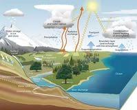 the water cycle essay symbiosis solved assignments papers the water cycle essay