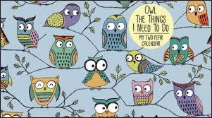 two year calender owls pocket calendar wpp178