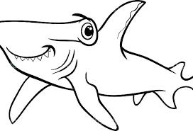 shark printable coloring pages free printable great white shark coloring pages kids coloring free printable shark