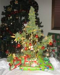 Just because you don't have room for a Christmas tree doesn't mean you're  down for the count.