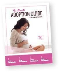 Adoption Birth Plan Template Adoption In Michigan
