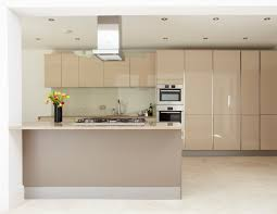 Modern Kitchen Cabinet Handles Modern Kitchen Cabinets No Handles Asdegypt Decoration