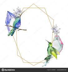 небо птица красочные колибри дикой акварель стилем площадь орнамент