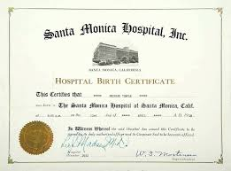 Template Dog Birth Certificate Template Temples Official Hospital