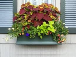 Decorative Planter Boxes Window Boxes From WindowBox Fine Flower Box Gardening 91