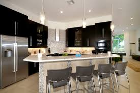 Modern Kitchen Remodel Kitchen Remodeling Souhtwest Florida Contractor