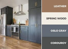 captivating kitchen color schemes match colors dark gray brown white combinations photos great cabinet beige countertops cabinets green countertop
