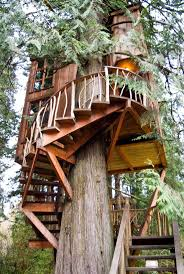 Cool Treehouses For Kids 180 Best Treehouse Images On Pinterest Treehouses Nature And