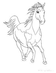Horse Coloring Pages Breyer Free Color Page Fun Time Sheets Of An