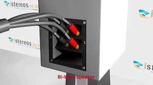 istereos how to connect bi wire speakers istereos how to connect bi wire speakers