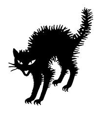 halloween black cat. Brilliant Halloween 20th Century Photograph  Halloween Black Cat By Granger In Halloween N