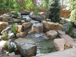 Small Picture Backyard Water Garden Designs Water Garden Designs Pictures