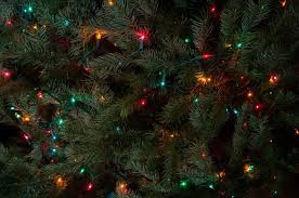 Sears Artificial Christmas Trees  BeneconnoiSear Christmas Trees