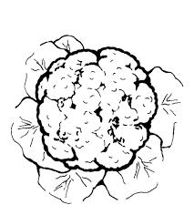 Imprimer Nature L Gumes Chou Num Ro 24479 Dessin De Legume A Imprimer Coloriage De Legume L