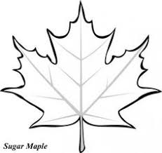 Small Picture Leaf Coloring Pages school Pinterest Leaves Craft and