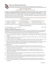 write executive summary sample resume cipanewsletter example executive summary resume sample building project