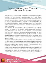 Nice Literature Review Paper Sample Literature Review