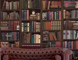 bookcase self adhesive wall mural