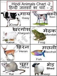 Hindi Birds Name Chart Hindi Animals Chart Hindi Language Learning Hindi