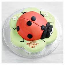 Fiona Cairns Ladybird Cake Waitrose Partners