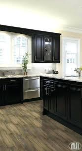 quartz kitchen inspirational moon white granite dark cabinets allen and roth countertops countertop colors