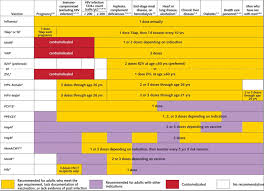 Cdc Immunization Chart Recommended Immunization Schedule For Adults Aged 19 Years