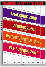 Heart Rate Zone Chart Training Heart Rate Zones Chart Bright