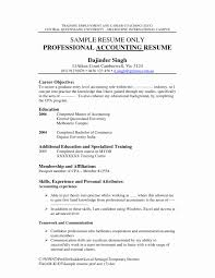 Resume Format For Experienced In Accounts Unique Objective For