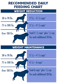 Dog Food Chart By Weight Blue Buffalo Feeding Chart Large Breed Puppy Best Picture