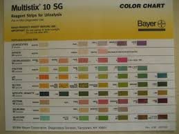 Multistix 10 Sg Results Chart Multistix Color Chart Bahangit Co
