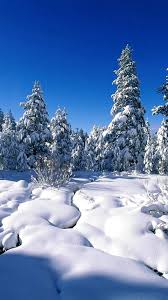Winter Wallpaper for Iphone Download ...