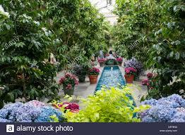 inside the united states botanic garden in washington dc usa